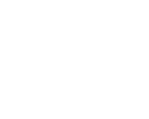 Visual IQ is the leading independent cross channel marketing intelligence software company.
