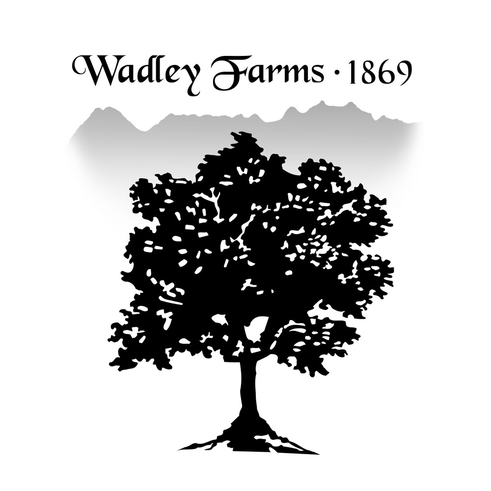 Ballet Wadley Farms.jpg
