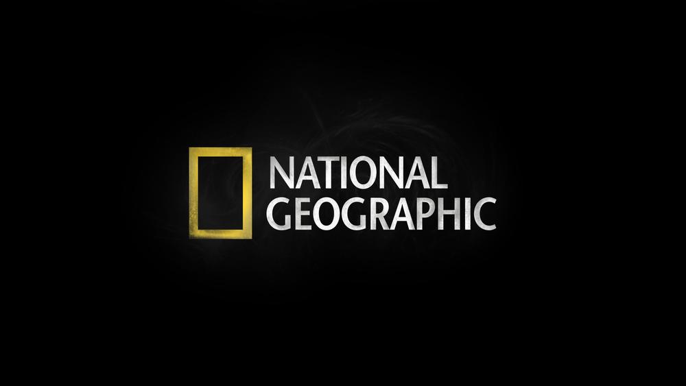 logo_reveal_02.jpg