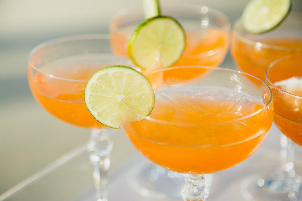 Marissa cocktails.jpg