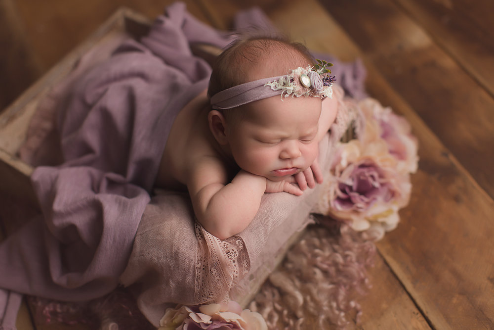 irvine-newborn-photographer-baby-girl-purple-studio.jpg