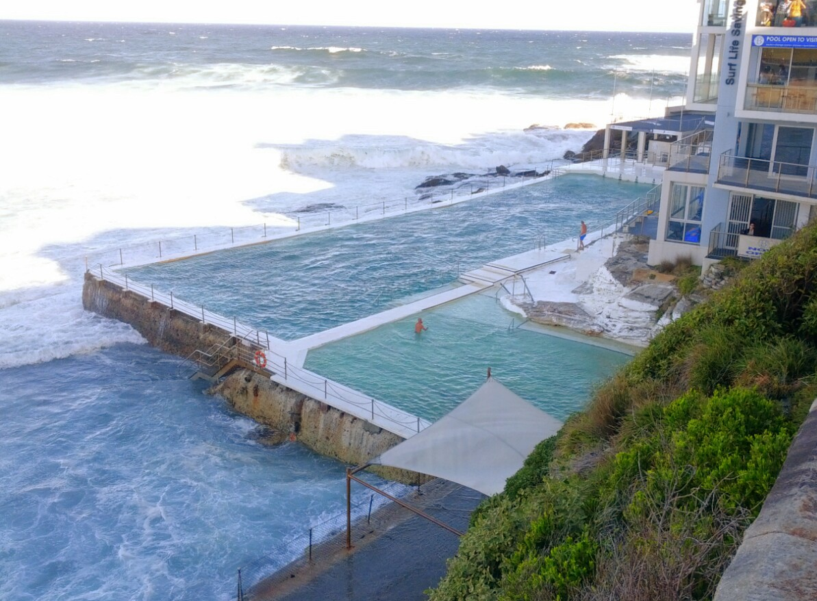 Bondi Icebergs pool and one brave soul!