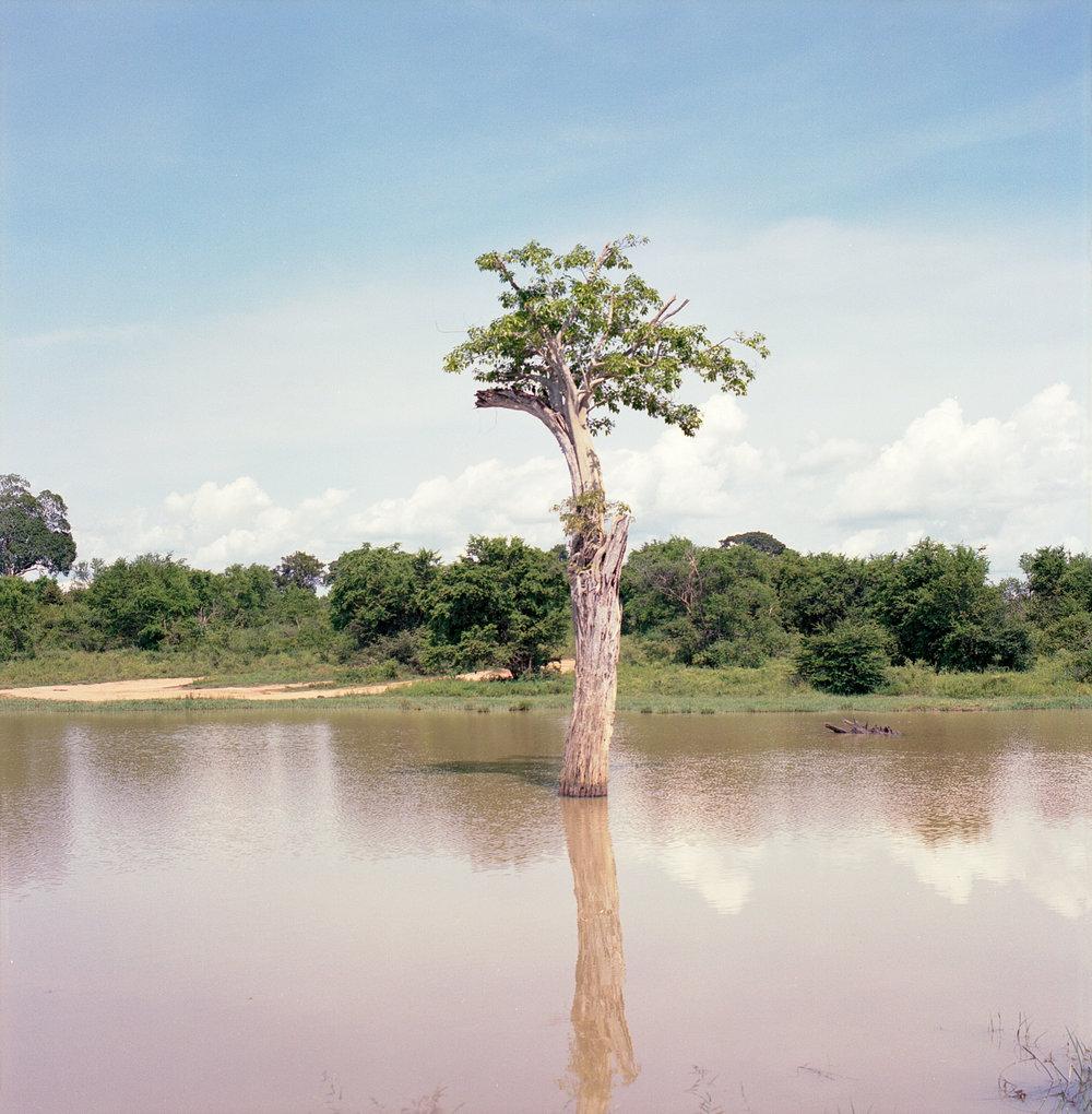 Hasselblad_SriLanka-48.jpg