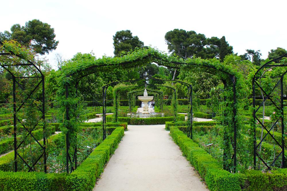 rose garden retiro park2.jpg
