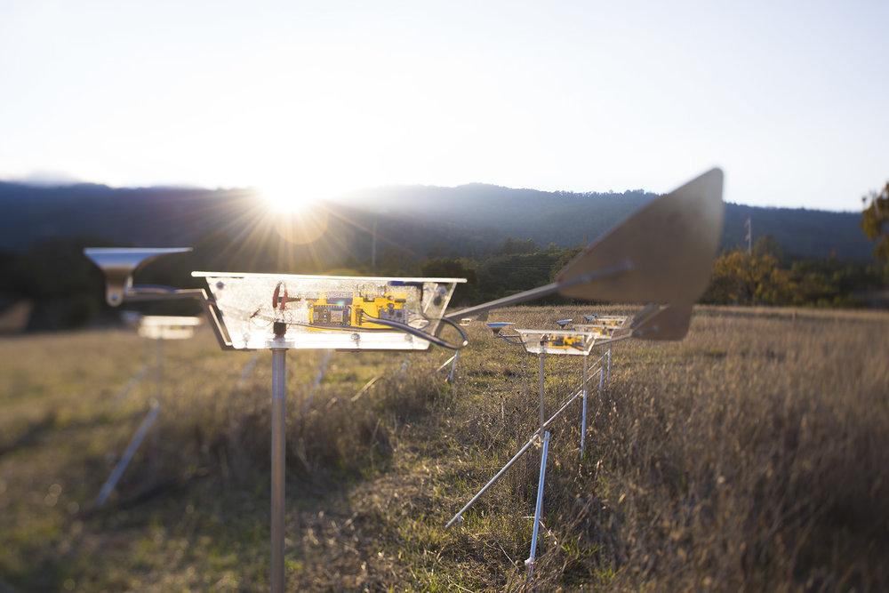 Cy Keener Remote Winds Field Detail.jpg