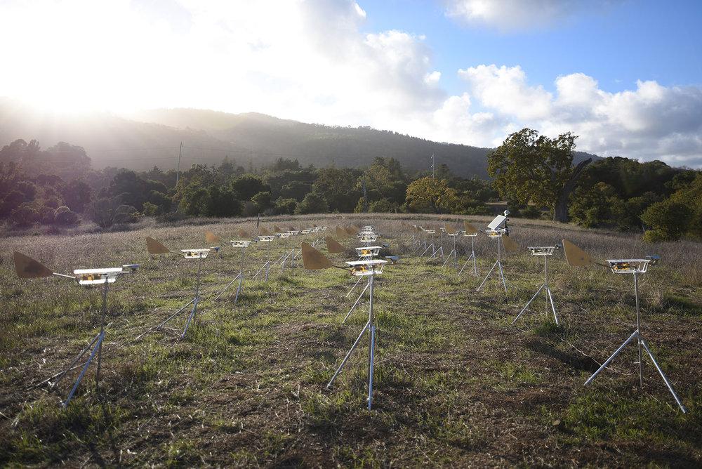 Cy Keener Remote Winds Field.jpg