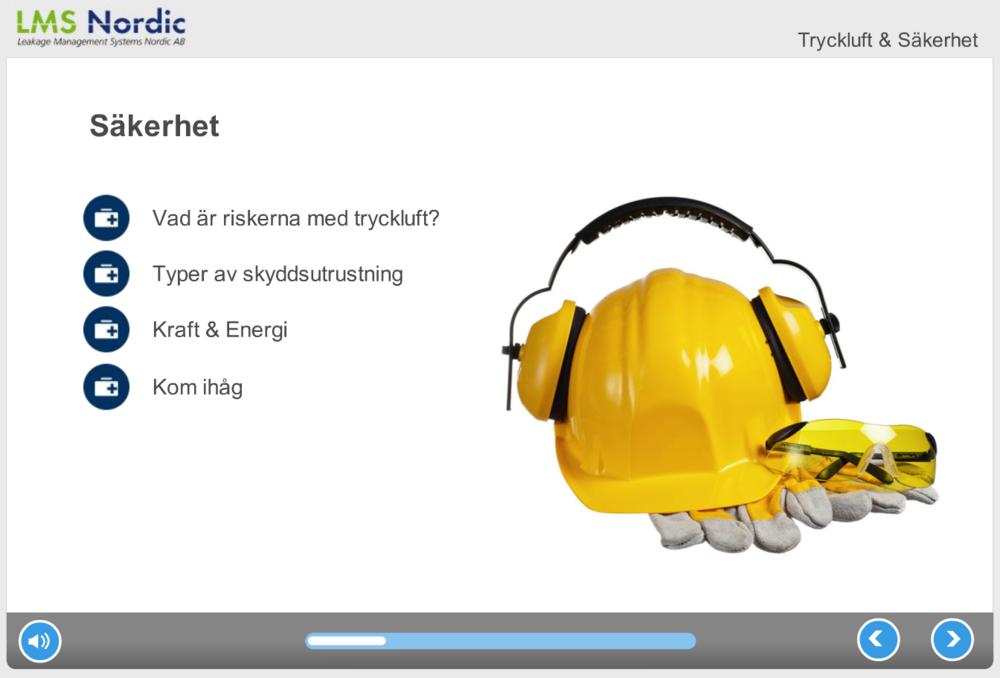 Skärmdump från onlinekursen