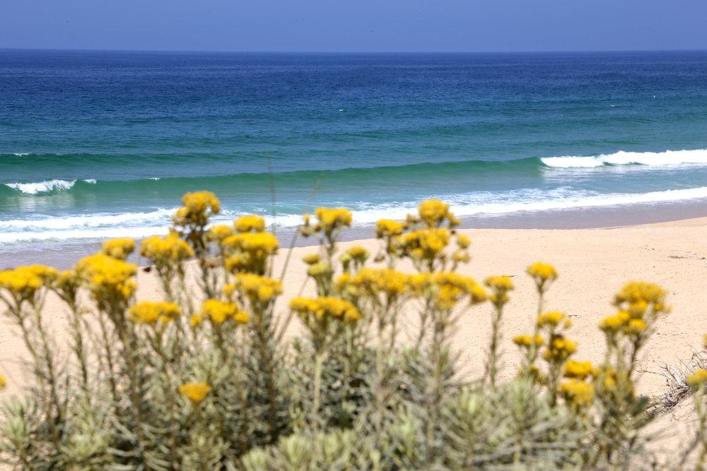 Casa do Pego - Pego Beach - Comporta - www.casadopego.com
