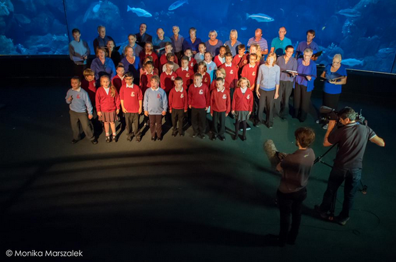 BBC filming performance of Ozone Song at National Aquarium with children from Ford Primary School, Plymouth and choir from South Devon Singers.