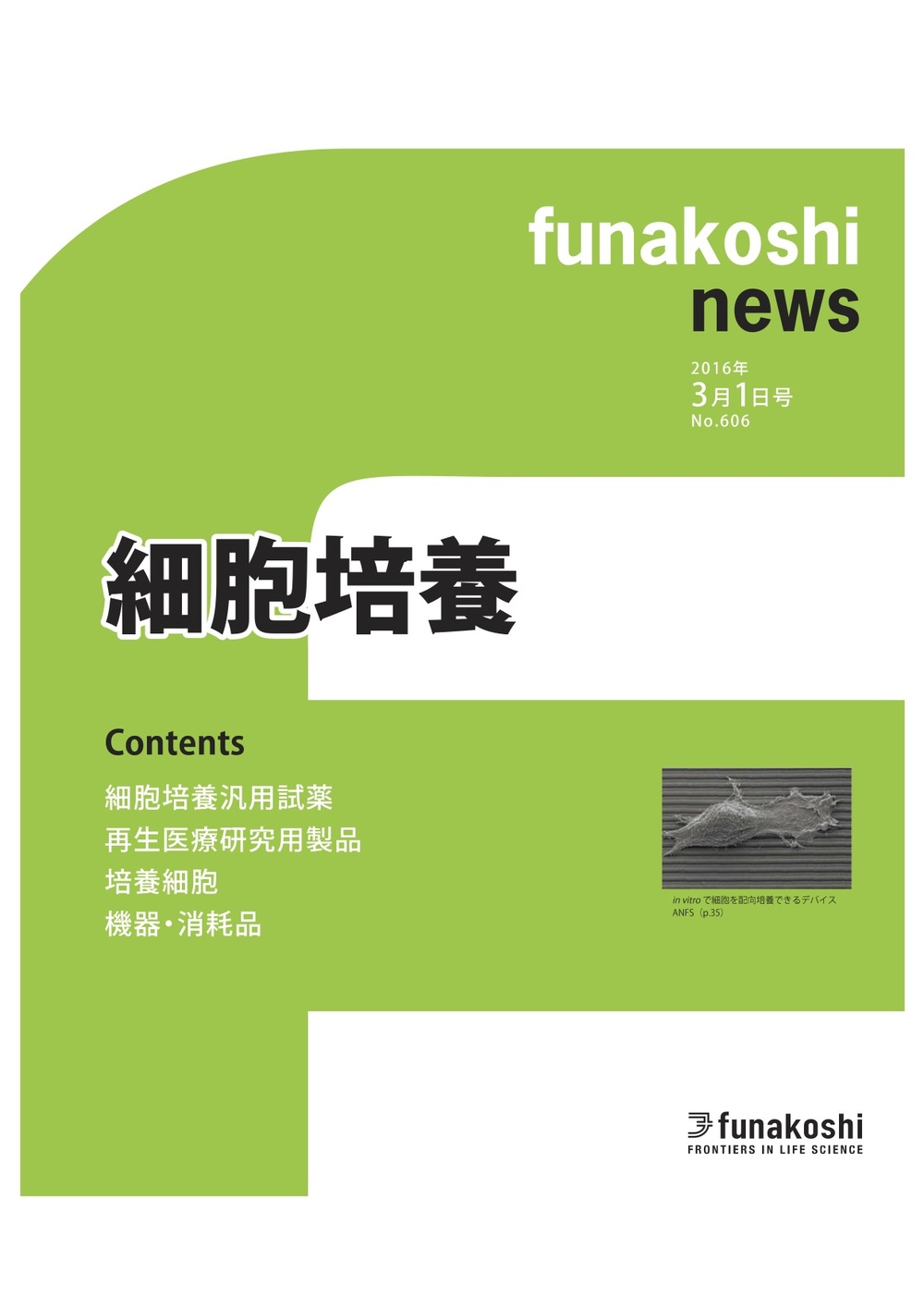 Funakoshi Ad 2.jpg