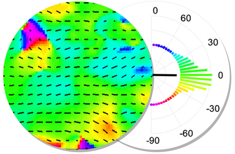 NanoSurface Cultureware Orientation HEAT Map CM