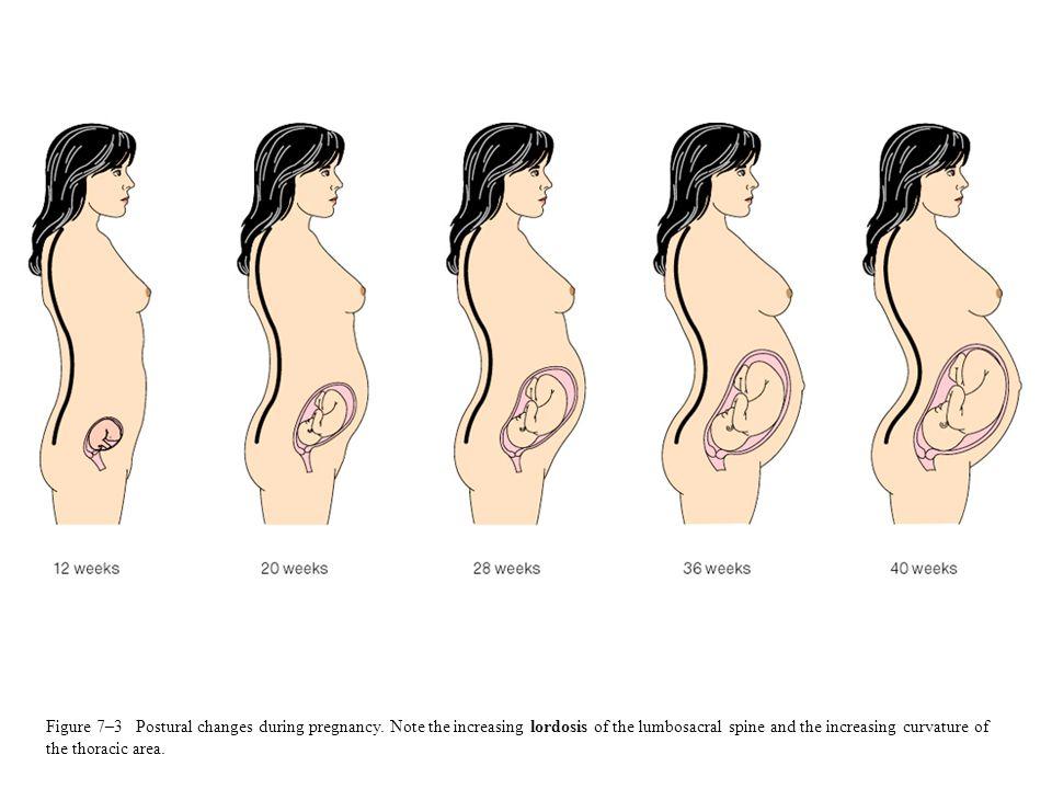 pregnancypodiatrist.jpg
