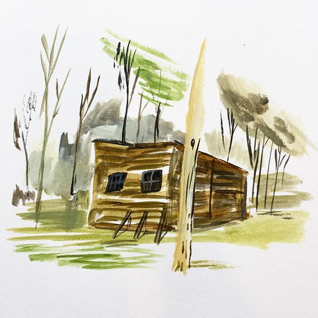 Planning hut in the woods