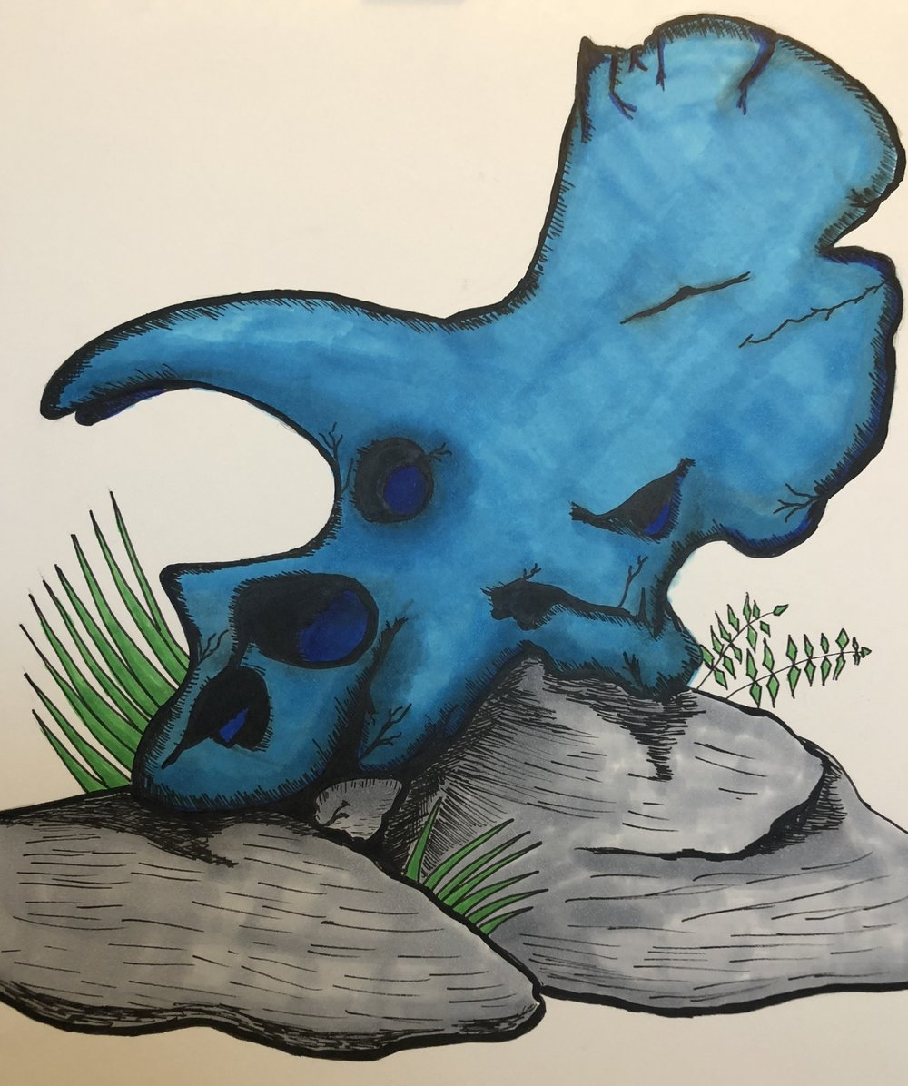 This is a triceratops' skull I did in blue because my daughter loves blue and she loves dinosaurs.