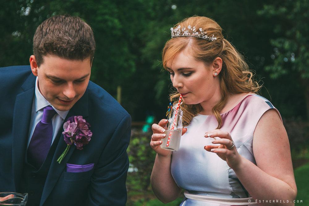 Norfolk_Wedding_Photographer_Mannington_Hall_Country_Esther_Wild_0227.jpg
