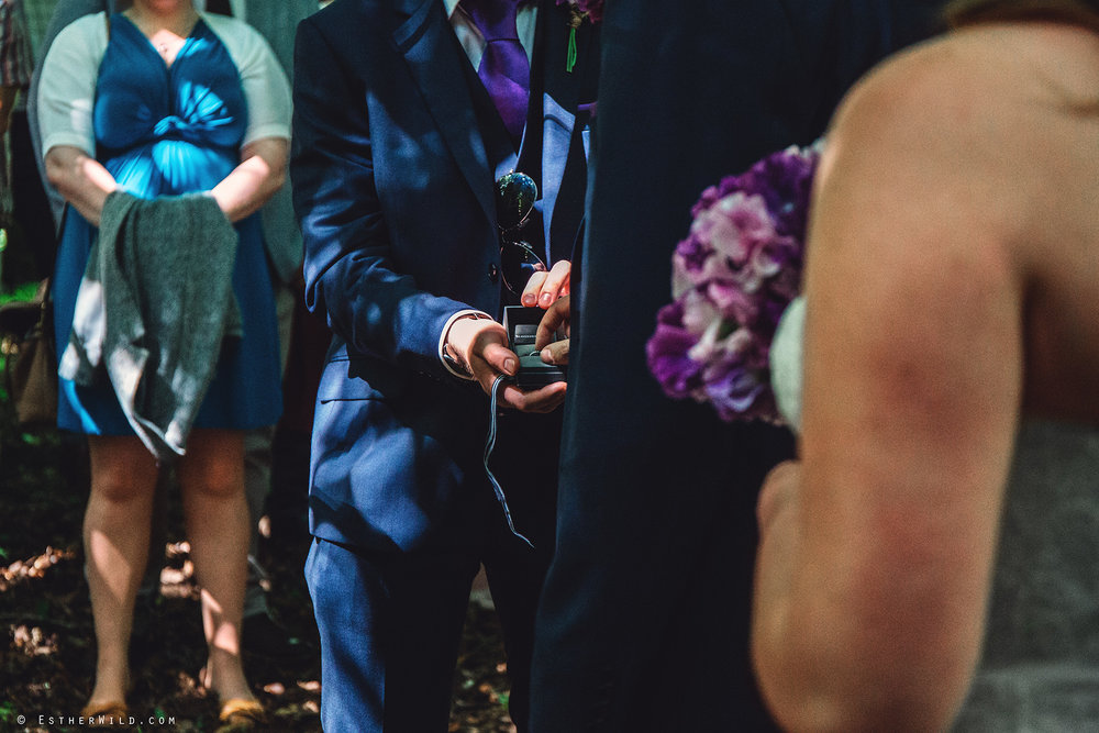 Norfolk_Wedding_Photographer_Mannington_Hall_Country_Esther_Wild_1015.jpg