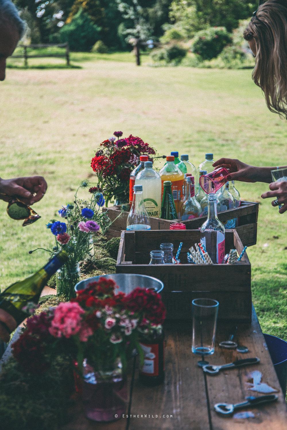 Norfolk_Wedding_Photographer_Mannington_Hall_Country_Esther_Wild_1769.jpg