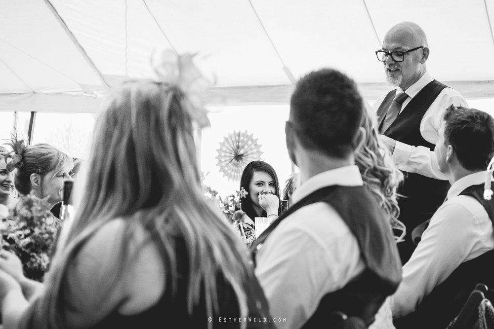 Norfolk_Wedding_Photographer_Mannington_Hall_Country_Esther_Wild_2147-1.jpg