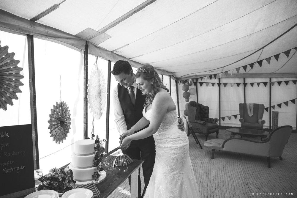 Norfolk_Wedding_Photographer_Mannington_Hall_Country_Esther_Wild_2387-1.jpg