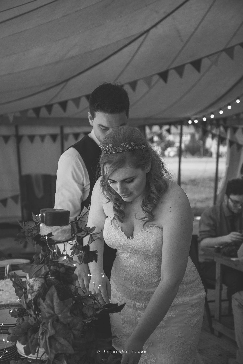 Norfolk_Wedding_Photographer_Mannington_Hall_Country_Esther_Wild_2418-1.jpg