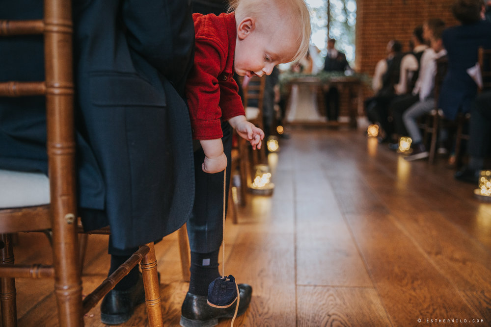 Reading_Room_Weddings_Alby_Norwich_Photographer_Esther_Wild_IMG_1078.jpg