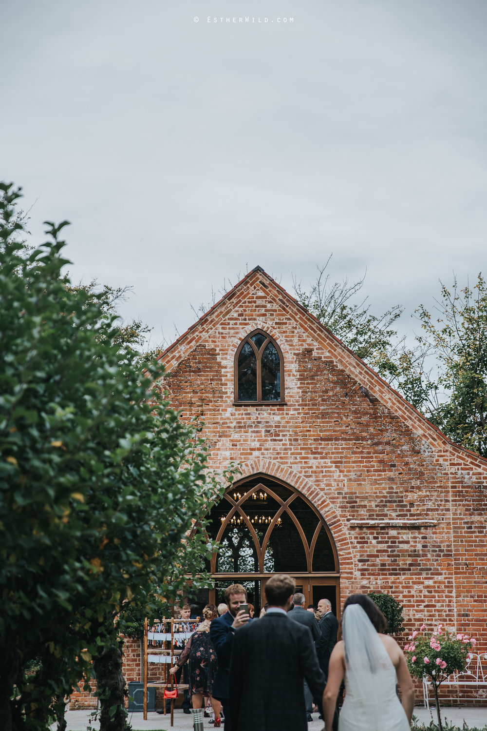 Reading_Room_Weddings_Alby_Norwich_Photographer_Esther_Wild_IMG_1890.jpg