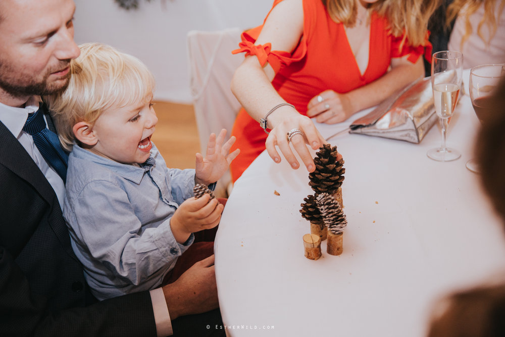 Reading_Room_Weddings_Alby_Norwich_Photographer_Esther_Wild_IMG_2600.jpg