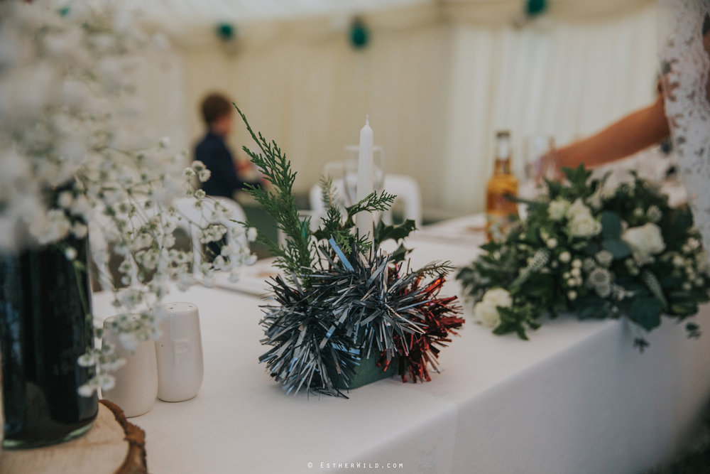 Wedding_Photography_Diss_Gawdy_Hall_Redenhall_Church_Norfolk_Winter_Esther_Wild_Copyright_IMG_1616.jpg