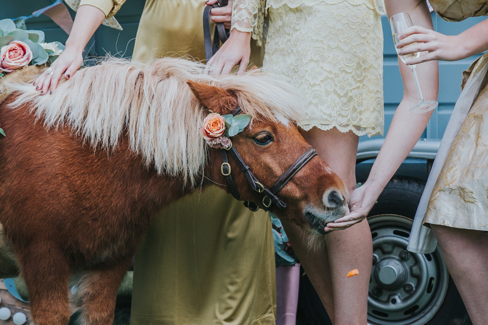 Esther_Wild_Little_Horse_Box_Norfolk_Wedding_IMG_2945.jpg