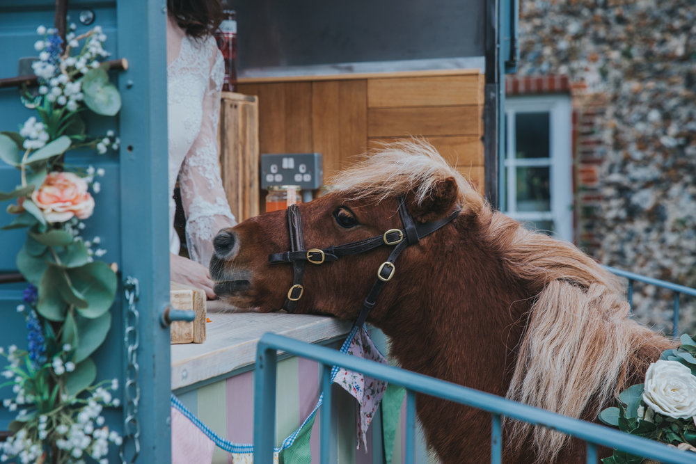 Esther_Wild_Little_Horse_Box_Norfolk_Wedding_IMG_3061.jpg
