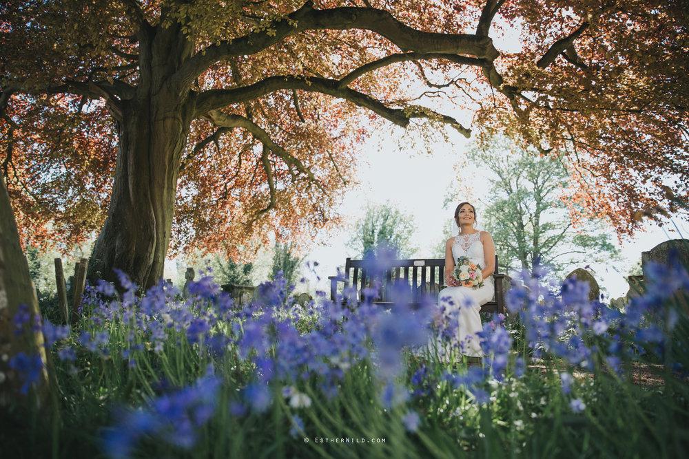 IMG_0953Walpole_St_Andrew_Church_Norfolk_Wedding_Copyright_Esther_Wild_Photographer_.jpg
