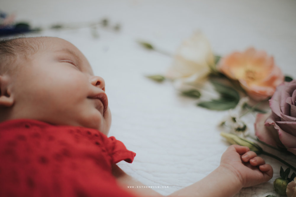 Newborn_Family_Photographer_Home_Norfolk_3R8A3844.jpg