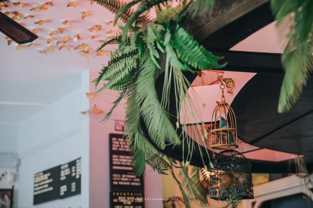 Norwich_Castle_Arcade_Grosvenor_Chip_Birdcage_Cathedral_Cloisters_Refectory_Wedding_Photography_Esther_Wild_Photographer_Norfolk_Kings_Lynn_3R8A1521.jpg