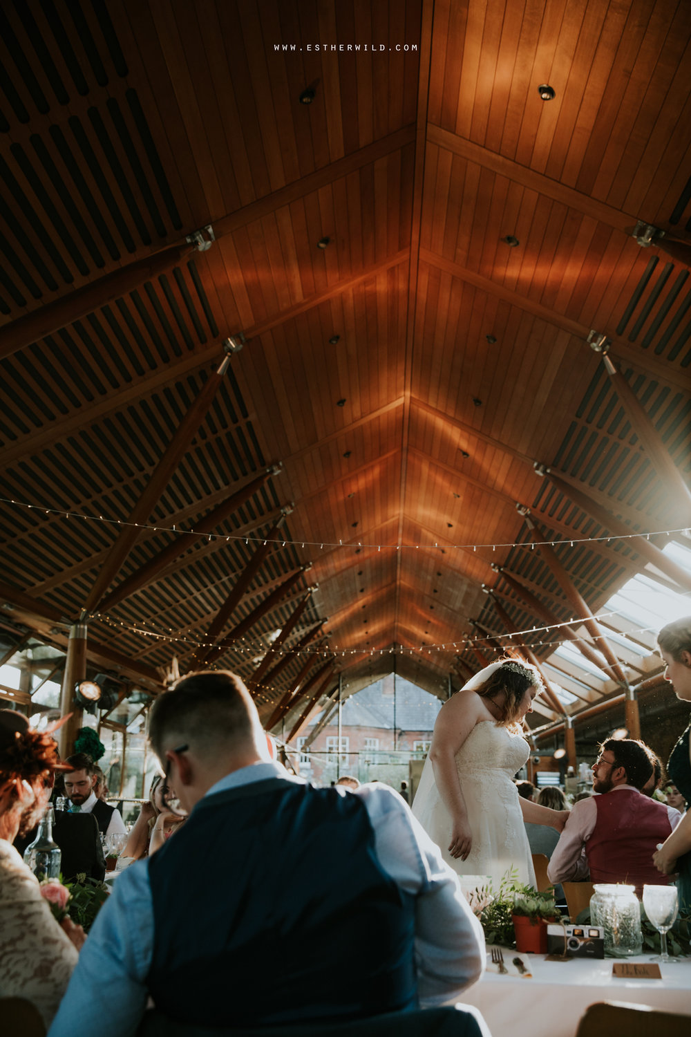Norwich_Castle_Arcade_Grosvenor_Chip_Birdcage_Cathedral_Cloisters_Refectory_Wedding_Photography_Esther_Wild_Photographer_Norfolk_Kings_Lynn_3R8A2253.jpg