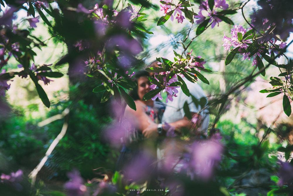 Sandringham_Woodland_Photo_Session_Engagement_Love_Pre-Wedding_IMG_2529.jpg