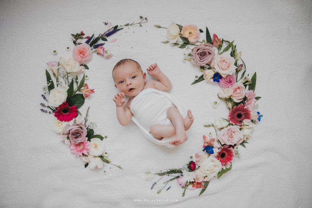 Newborn_Family_Photographer_Home_Norfolk_3R8A3837.jpg