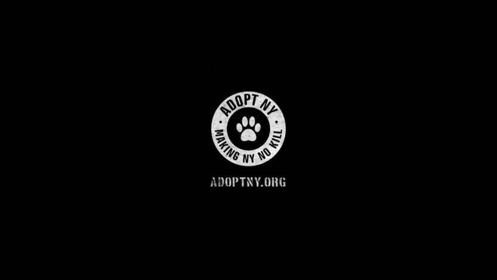 adoptny
