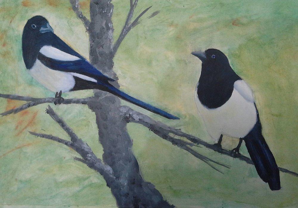 Jims oil bird.jpg