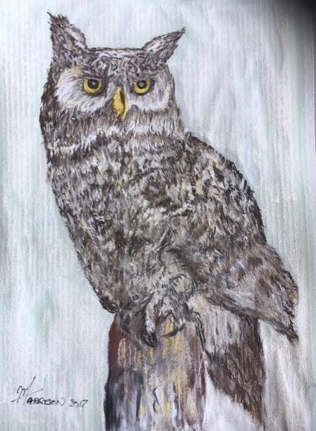 Mike+Owl+pastel.jpg