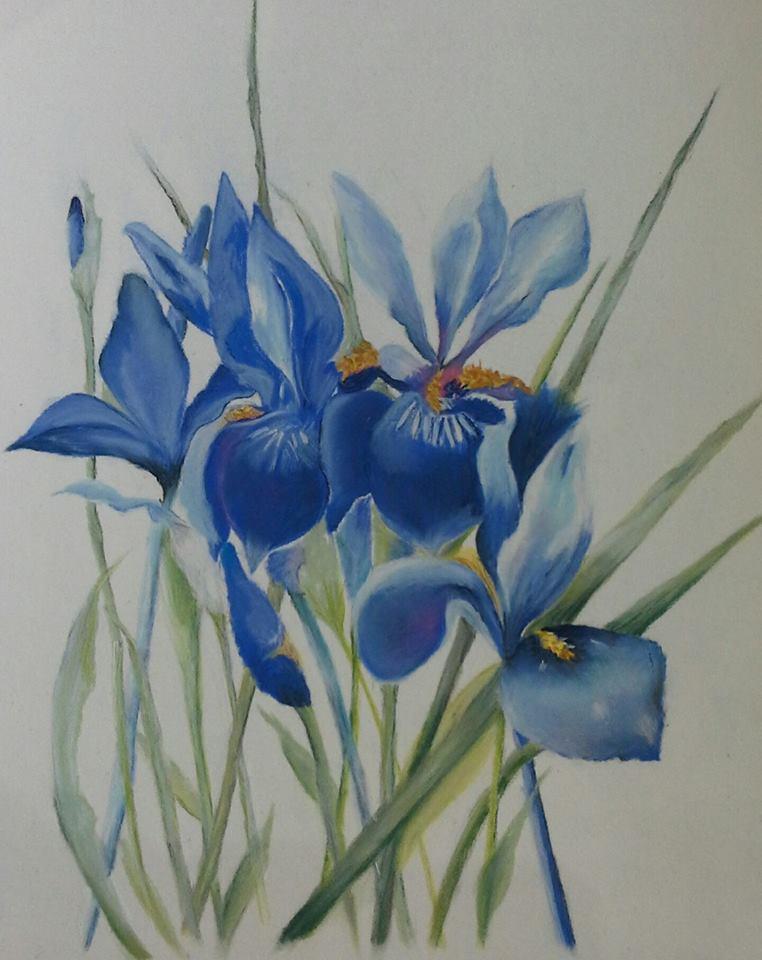 Linda T flower.jpg