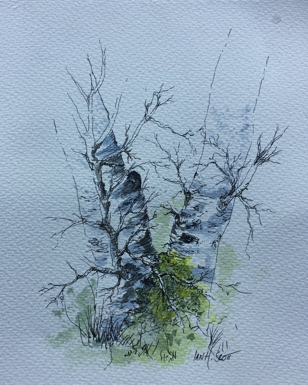 Ian birch.jpg
