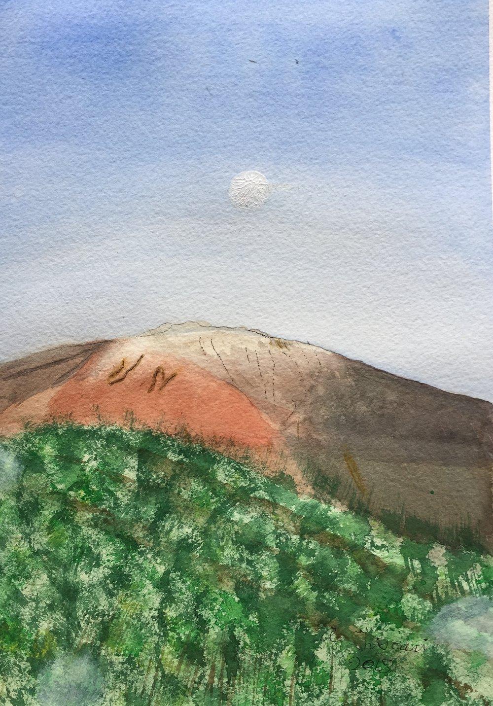 Tony Triscari mount etna.jpg