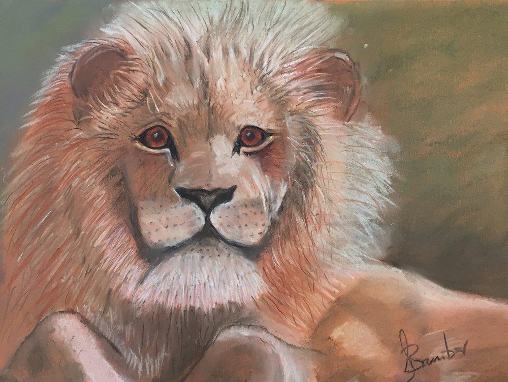 Jimmy lion.jpg