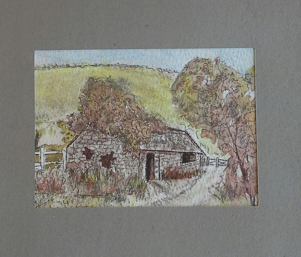 Doreen 2.jpg