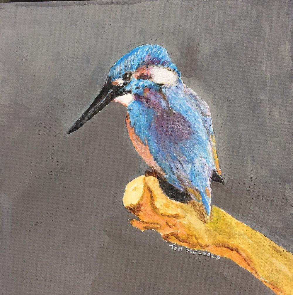 TM bird.jpg