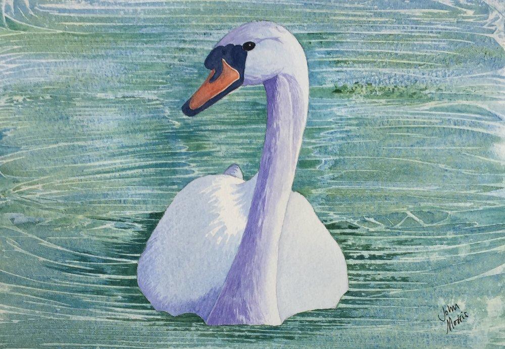 JM Swan no frame.jpg