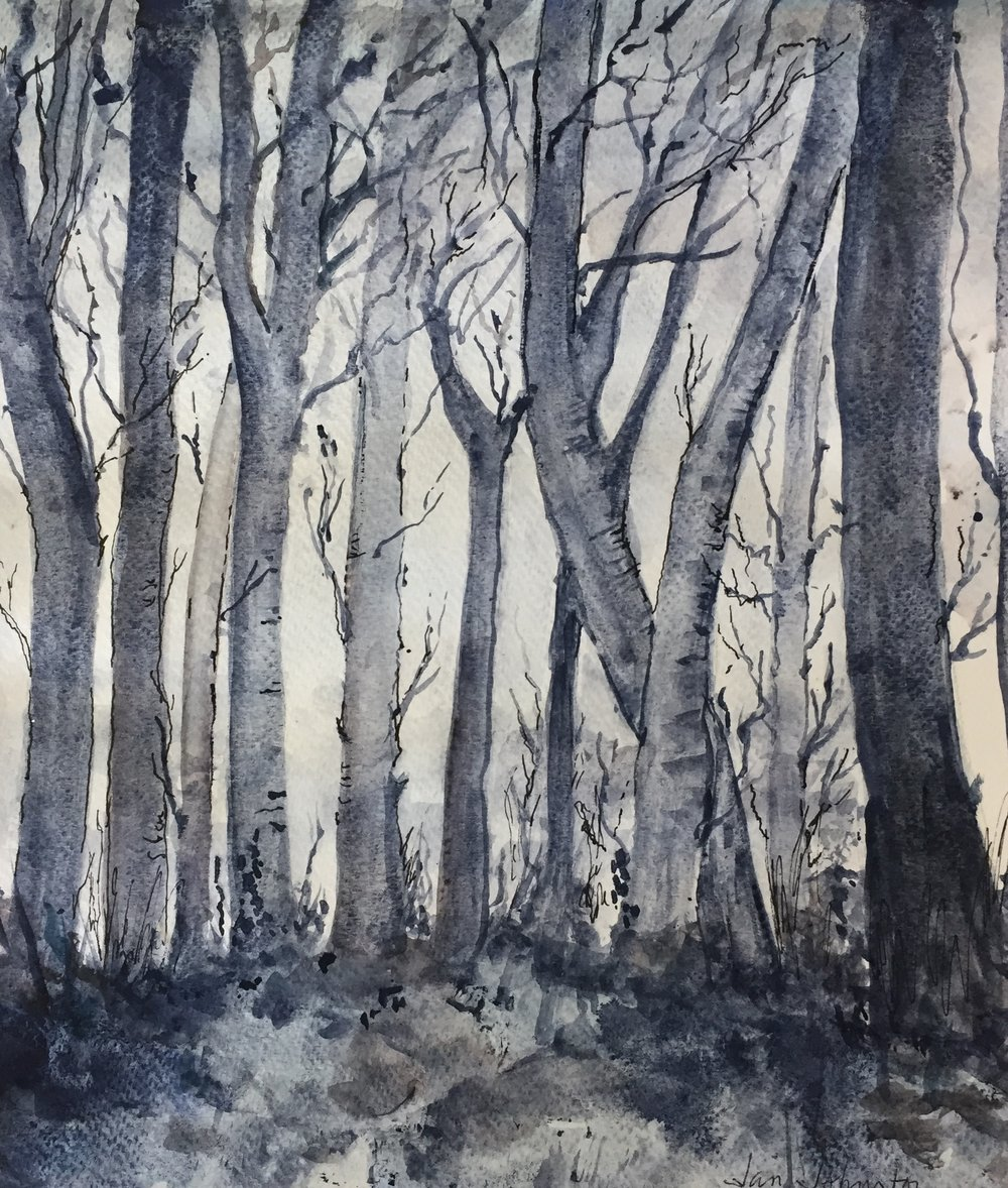Jan trees.jpg