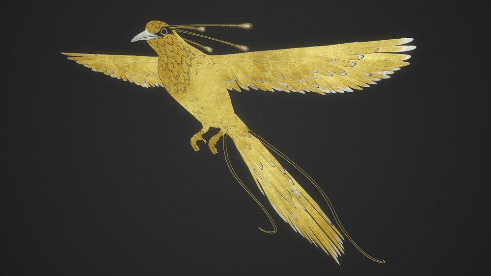 BirdOfParadise_002.jpg