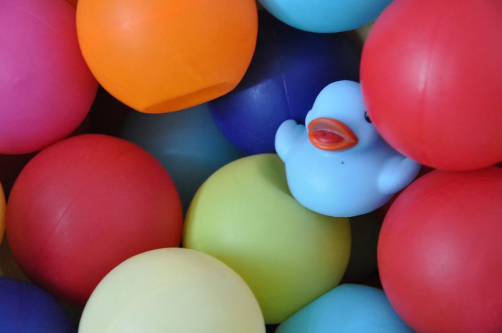 DSC_0052 balls:duck sml.jpg