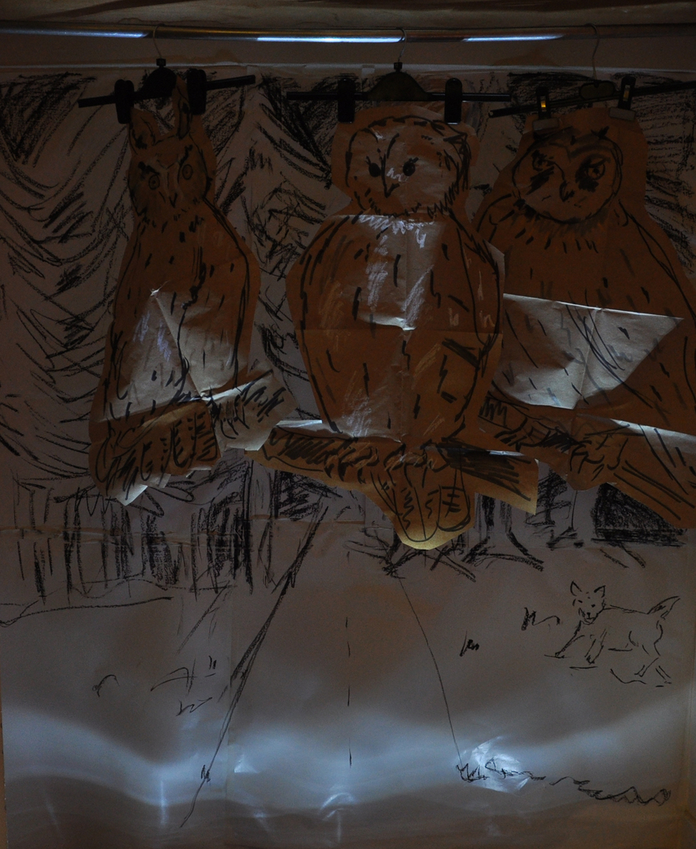 DSC_0188 three owls in dark sml.jpg